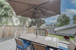 Photo 35: 4520 Namaka Crescent NW in Calgary: North Haven Detached for sale : MLS®# A1112098