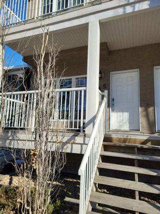 Photo 11: 5 11917 103 Street in Edmonton: Zone 08 Condo for sale : MLS®# E4260116