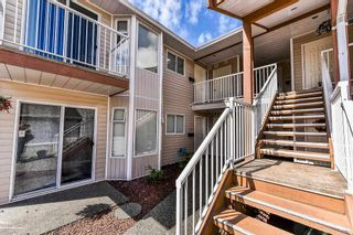 Photo 2: 250 6875 121 Street in Surrey: West Newton Townhouse for sale : MLS®# R2281994