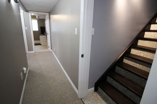 Photo 28: 262 Clitheroe Road in Grafton: House for sale : MLS®# X5398824