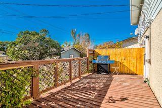 Photo 39: 2923 Doverville Crescent SE in Calgary: Dover Semi Detached for sale : MLS®# A1146625