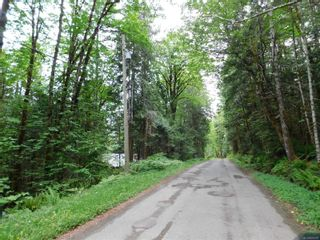 Photo 7: 10630 Tilly Rd in Port Alberni: PA Sproat Lake Land for sale : MLS®# 879576
