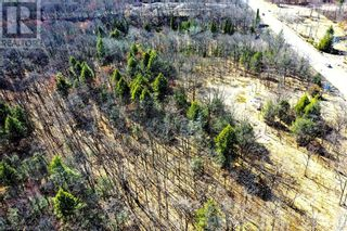 Photo 8: 0 COUNTY ROAD 36 in Bobcaygeon: Vacant Land for sale : MLS®# 40095128