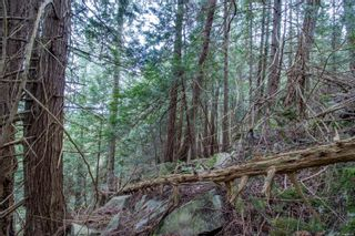 Photo 10: 8803 Canal Rd in : GI Pender Island Land for sale (Gulf Islands)  : MLS®# 874547