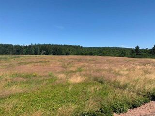 Photo 1: Hwy#209 Highway in East Advocate: 102S-South Of Hwy 104, Parrsboro and area Vacant Land for sale (Northern Region)  : MLS®# 202107461