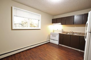 Photo 19: 5501 37 Street: Red Deer Multi Family for sale : MLS®# A1130594