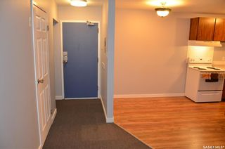 Photo 1: 203 601 X Avenue South in Saskatoon: Meadowgreen Residential for sale : MLS®# SK856281
