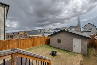 Photo 36: 113 Copperstone Circle SE in Calgary: Copperfield Detached for sale : MLS®# A1103397