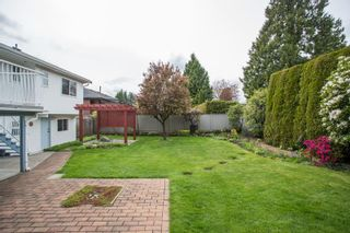 Photo 38: 2377 LATIMER Avenue in Coquitlam: Central Coquitlam House for sale : MLS®# R2573404