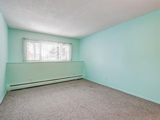 Photo 20: 101 6919 Elbow Drive SW in Calgary: Kelvin Grove Apartment for sale : MLS®# A1052867