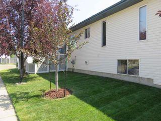 Photo 49: 929 116A Street in Edmonton: Zone 16 House for sale : MLS®# E4256079