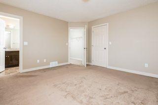 Photo 31: 3814 Allan Drive in Edmonton: Zone 56 Attached Home for sale : MLS®# E4255416