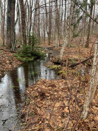 Photo 3: Lot 5 Highway 362 in Victoria Vale: 400-Annapolis County Vacant Land for sale (Annapolis Valley)  : MLS®# 202106854