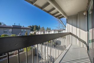 """Photo 10: 103 3180 E 58TH Avenue in Vancouver: Champlain Heights Townhouse for sale in """"HIGHGATE"""" (Vancouver East)  : MLS®# R2345170"""