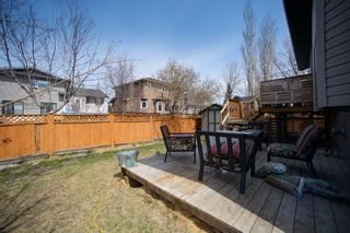 Photo 24: 318 Meadowbrook Bay SE: Airdrie Detached for sale : MLS®# A1101593