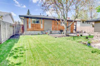 Photo 39: 95 Lake Linnet Close SE in Calgary: Lake Bonavista Detached for sale : MLS®# A1112243