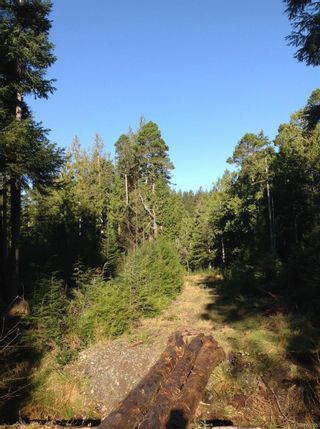 Photo 7: 45 Meynell Rd in : Isl Sointula Land for sale (Islands)  : MLS®# 868760