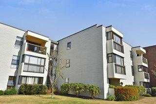 Photo 11: 303 5791 GRANVILLE AVENUE in Richmond: Riverdale RI Condo for sale : MLS®# R2328996