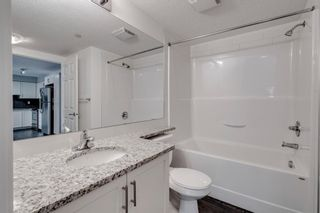 Photo 22: 4208 279 Copperpond Common SE in Calgary: Copperfield Apartment for sale : MLS®# A1095874