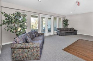 """Photo 28: 310 20120 56 Avenue in Langley: Langley City Condo for sale in """"Blackberry Lane"""" : MLS®# R2564037"""