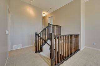 Photo 24: 9266 212 Street in Edmonton: Zone 58 House for sale : MLS®# E4249950