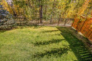Photo 42: 228 Walgrove Heath SE in Calgary: Walden Detached for sale : MLS®# A1149331