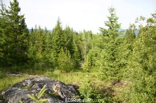 Photo 18: 190 SW Christison Road in Salmon Arm: Gleneden Vacant Land for sale : MLS®# 10118444