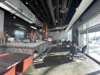 Photo 4:  in Edmonton: Zone 15 Business for sale : MLS®# E4229822