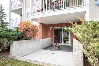 Photo 26: 102 8315 83 Street in Edmonton: Zone 18 Condo for sale : MLS®# E4229609