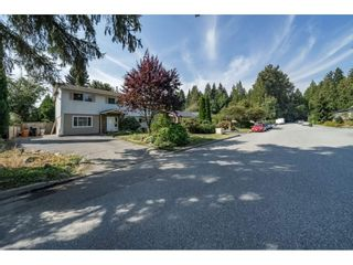 Photo 2: 3243 NEWBERRY Street in Port Coquitlam: Lincoln Park PQ House for sale : MLS®# R2301176
