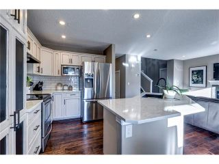 Photo 9: 41 ROYAL BIRCH Crescent NW in Calgary: Royal Oak House for sale : MLS®# C4041001