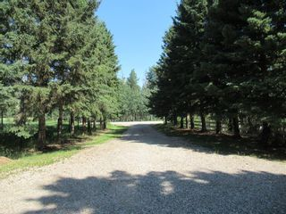 Photo 4: 4137 Township Road  350: Rural Red Deer County Detached for sale : MLS®# A1127298