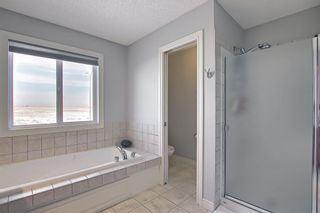 Photo 29: 260 SPRINGMERE Way: Chestermere Detached for sale : MLS®# A1073459