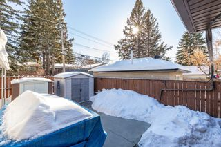 Photo 32: 136 Fairview Crescent SE in Calgary: Fairview Detached for sale : MLS®# A1073972