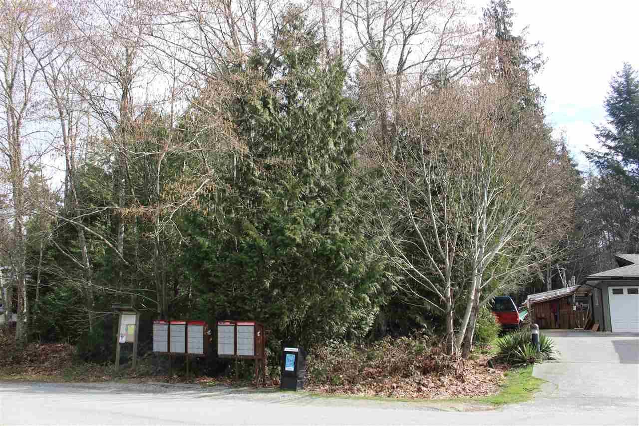 Photo 3: Photos: 6142 S GALE Avenue in Sechelt: Sechelt District Land for sale (Sunshine Coast)  : MLS®# R2264834