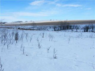 Photo 5: : Rural Mountain View County Rural Land for sale : MLS®# C3653320