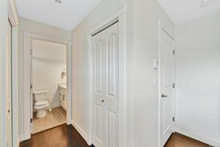 Photo 12: 2919 Doncaster Dr in Victoria: Vi Oaklands House for sale : MLS®# 876485