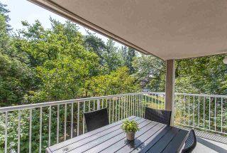 "Photo 17: 203 20556 113 Avenue in Maple Ridge: Southwest Maple Ridge Condo for sale in ""THE MAPLES"" : MLS®# R2189933"