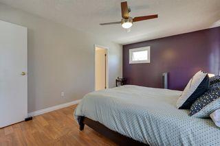 Photo 29: 11216 79 Street in Edmonton: Zone 09 House for sale : MLS®# E4231957