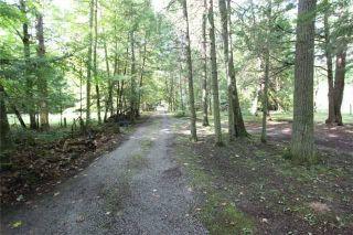 Photo 9: 6 Cardinal Drive in Kawartha Lakes: Rural Eldon House (Backsplit 3) for sale : MLS®# X3609146