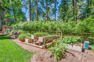 Photo 62: 4498 Colwin Rd in : CR Campbell River South House for sale (Campbell River)  : MLS®# 879358