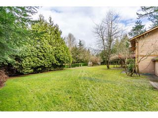 """Photo 30: 6057 243 Street in Langley: Salmon River House for sale in """"Salmon River"""" : MLS®# R2538045"""