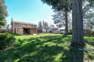 Photo 3: 4643 Macintyre Ave in : CV Courtenay East House for sale (Comox Valley)  : MLS®# 872744