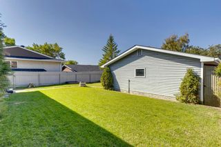 Photo 30: 40 Rundlewood Bay NE in Calgary: Rundle Detached for sale : MLS®# A1141150