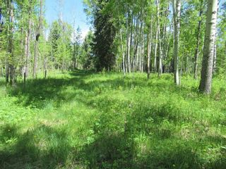 Photo 32: 351035A Range Road 61: Rural Clearwater County Detached for sale : MLS®# C4297657