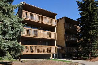Main Photo: 206 618 2 Avenue NW in Calgary: Sunnyside Apartment for sale : MLS®# A1144233