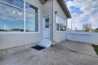Photo 30: 141 SADDLEMEAD Road in Calgary: Saddle Ridge Detached for sale : MLS®# A1052360