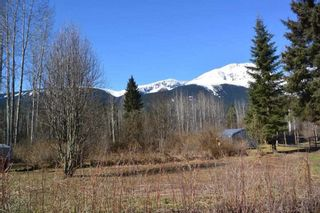 """Photo 30: 4365 LAKE KATHLYN Road in Smithers: Smithers - Rural House for sale in """"Lake Kathlyn"""" (Smithers And Area (Zone 54))  : MLS®# R2557275"""