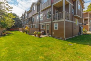 Photo 23: 3 2923 Shelbourne St in : Vi Oaklands Row/Townhouse for sale (Victoria)  : MLS®# 850799