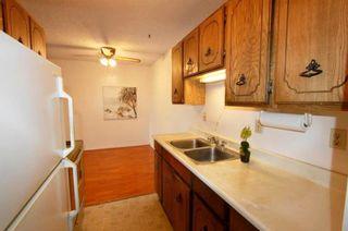 Photo 6: 226 2600 E 49TH Avenue in Vancouver: Killarney VE Condo for sale (Vancouver East)  : MLS®# R2614218